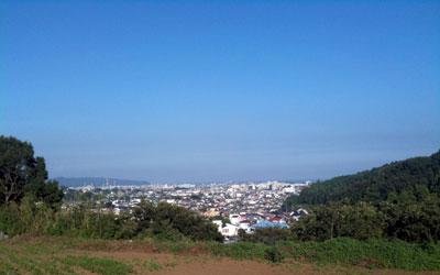 小田原の農園
